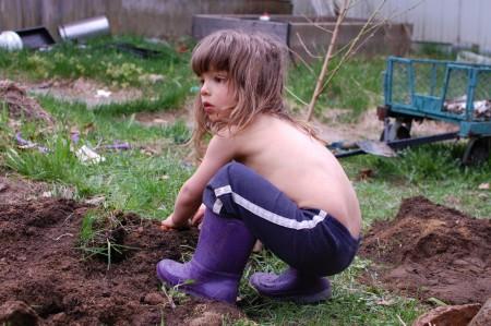 כשחופרים בורות יש אדמה תחוחה. זה הזמן להביא איזה מחפרון או שופל